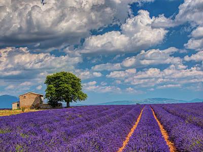 France, Provence, Old Farm House Art Print by Terry Eggers