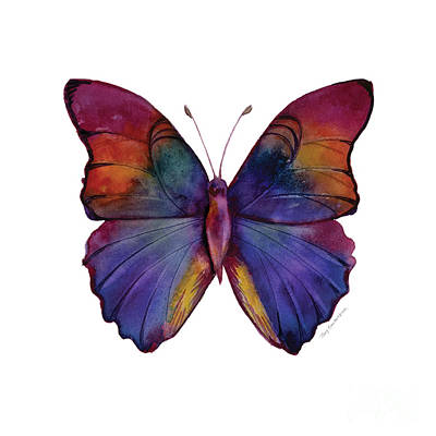 White Background Painting - 13 Narcissus Butterfly by Amy Kirkpatrick