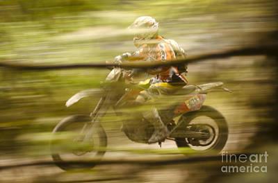 Through The Woods Print by Angel  Tarantella