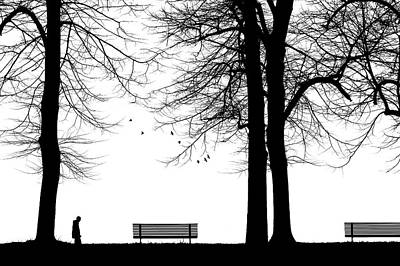Benches Photograph - Untitled by Massimo Della Latta
