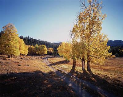 Dirt Roads Photograph - California, Sierra Nevada Mountains by Christopher Talbot Frank