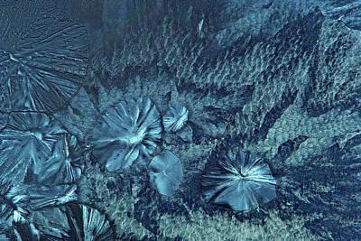 Edta Crystals Art Print by Marek Mis