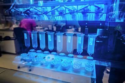 Purified Photograph - Genetic Analysis by Arno Massee