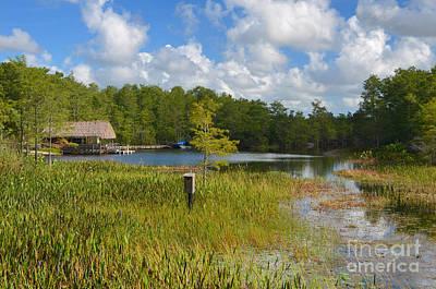 Photograph - 14- Grassy Waters Preserve by Joseph Keane