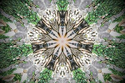 Kaleidoscope Art Print by Joe Oliver
