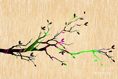 Trees Mixed Media - Tree Branch Collection by Marvin Blaine