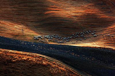Autumn Hills Photograph - Untitled by Massimo Della Latta