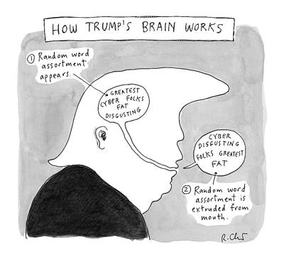 Brain Drawing - New Yorker October 31st, 2016 by Roz Chast