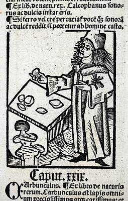 1491 Medieval Apothecary Hortus Sanitatis Art Print