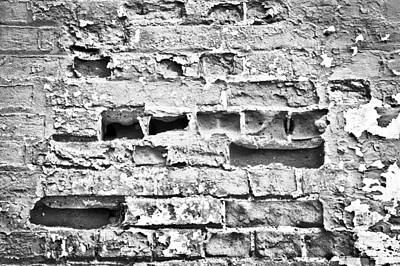 Stability Photograph - Brick Wall by Tom Gowanlock