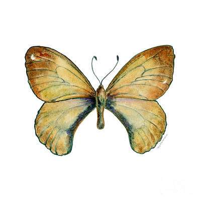 Painting - 15 Clouded Apollo Butterfly by Amy Kirkpatrick