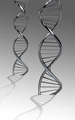 Molecular Structure Digital Art - Conceptual Image Of Dna by Stocktrek Images