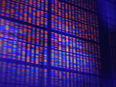 Heredity Photograph - Dna Microarray by Pasieka