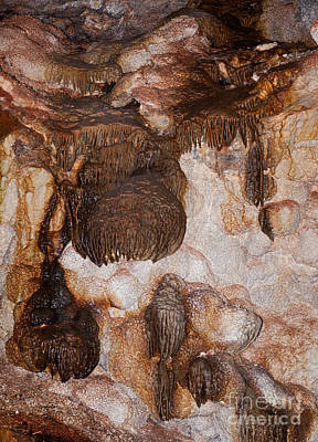 Photograph - Jewel Cave Jewel Cave National Monument by Fred Stearns