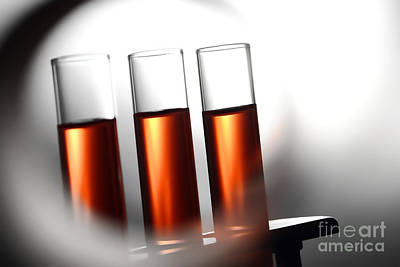 Photograph - Laboratory Test Tubes In Science Research Lab by Science Research Lab By Olivier Le Queinec