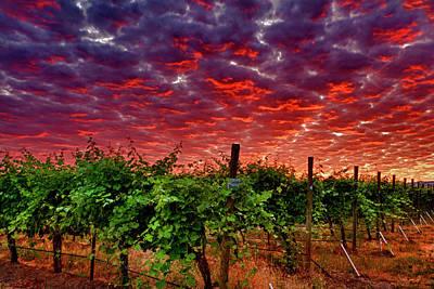 Wine Barrel Photograph - Usa, Washington, Walla Walla by Richard Duval