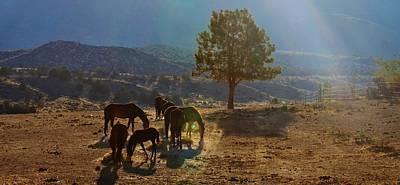 Digital Art - 155 by Wynema Ranch