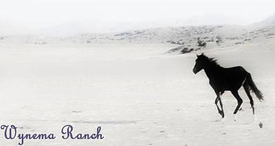 Digital Art - 156 by Wynema Ranch
