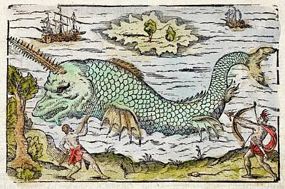 1582 Sawfish Pristis As Sea Unicorn Art Print
