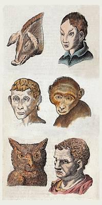 1590 Della Porta Animal Human Physiognomy Art Print by Paul D Stewart