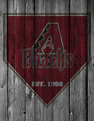 Diamondback Photograph - Arizona Diamondbacks by Joe Hamilton