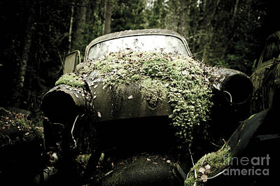 D700 Photograph - The Car Cemetery by Geir Kristiansen