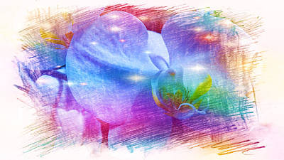 Abstract Airplane Art Rights Managed Images - Orchids Royalty-Free Image by Xueyin Chen