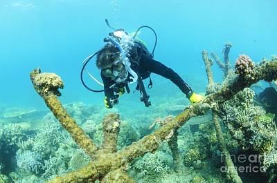 Biorock Reef Restoration, Indonesia Art Print