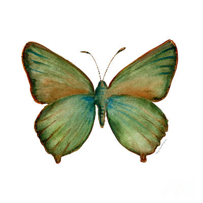 Painting - 17 Green Hairstreak Butterfly by Amy Kirkpatrick