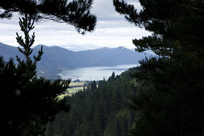 Queen Charlotte Sound Art Print by Karen Cowled