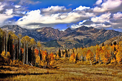 Beauty Mark Photograph - Rocky Mountain Fall by Mark Smith