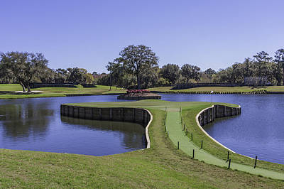 Photograph - 17th Hole Or Island Green At Tpc Sawgrass by Karen Stephenson