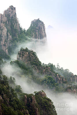 Mist Photograph - Beauty In Nature by King Wu