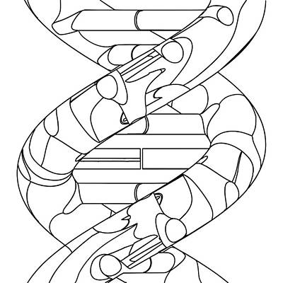 Dna Molecule Art Print by Russell Kightley