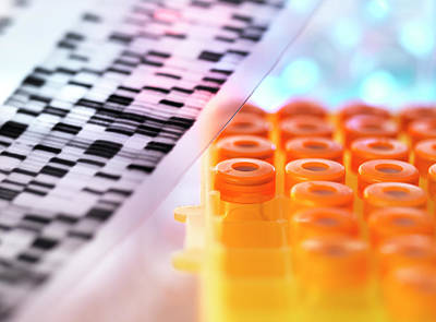 Dna Photograph - Dna Research by Tek Image