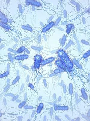 E. Coli Bacteria Art Print