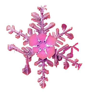 Snowflake Art Print by Ars/us Dept Of Agriculture