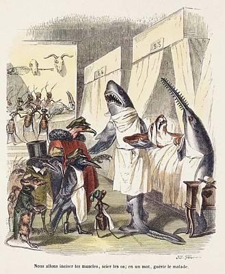 1842 Surgeon Doctors As Sharks Print by Paul D Stewart