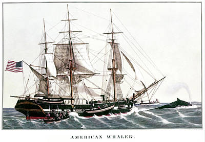 1850s American Whaler - Whaling Ship Art Print