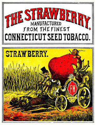 Painting - 1874 The Strawberry Cigar by Historic Image