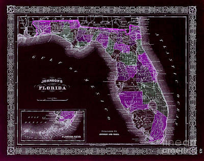 Old Keys Photograph - 1883 Florida Map Black by Jon Neidert