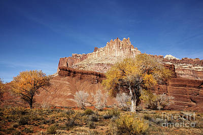 Capitol Reef National  Park Cathedral Valley Original by Southern Utah  Photography