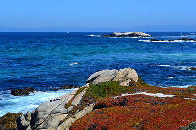 Photograph - 17 Mile Drive  Monterey California by Dean Ferreira