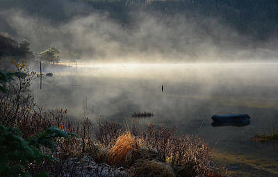 Photograph - Muckross Lake by Barbara Walsh