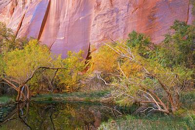 Utah, Glen Canyon National Recreation Art Print