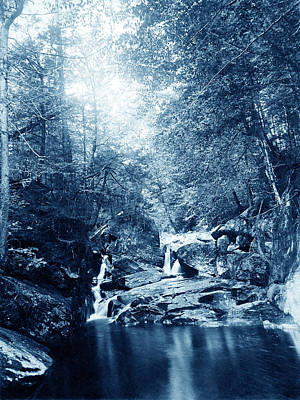 Photograph - 1900 Cyanotype New England Woods by Historic Image
