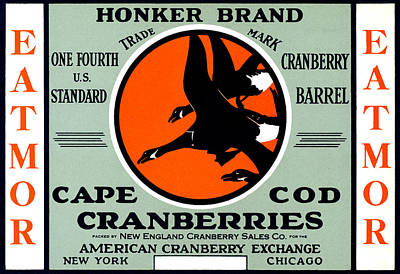 Cape Cod Painting - 1900 Honker Cranberries by Historic Image