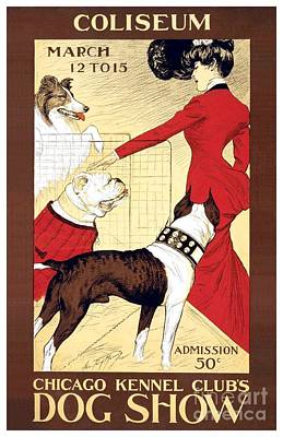 Digital Art - 1903 - Chicago Kennel Clubs Dog Show Poster - Color by John Madison
