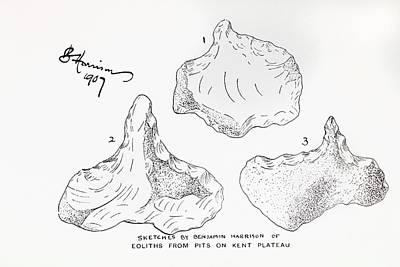 Handaxe Photograph - 1907 Harrison Eolith Dawn Stone Tool by Paul D Stewart