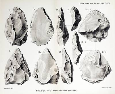 1913 Handaxe Plate Piltdown Man Hoax Art Print by Paul D Stewart